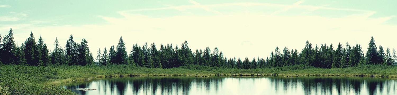 Ribniško Pohorje