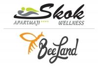 Apartmaji & wellness Skok Mozirje